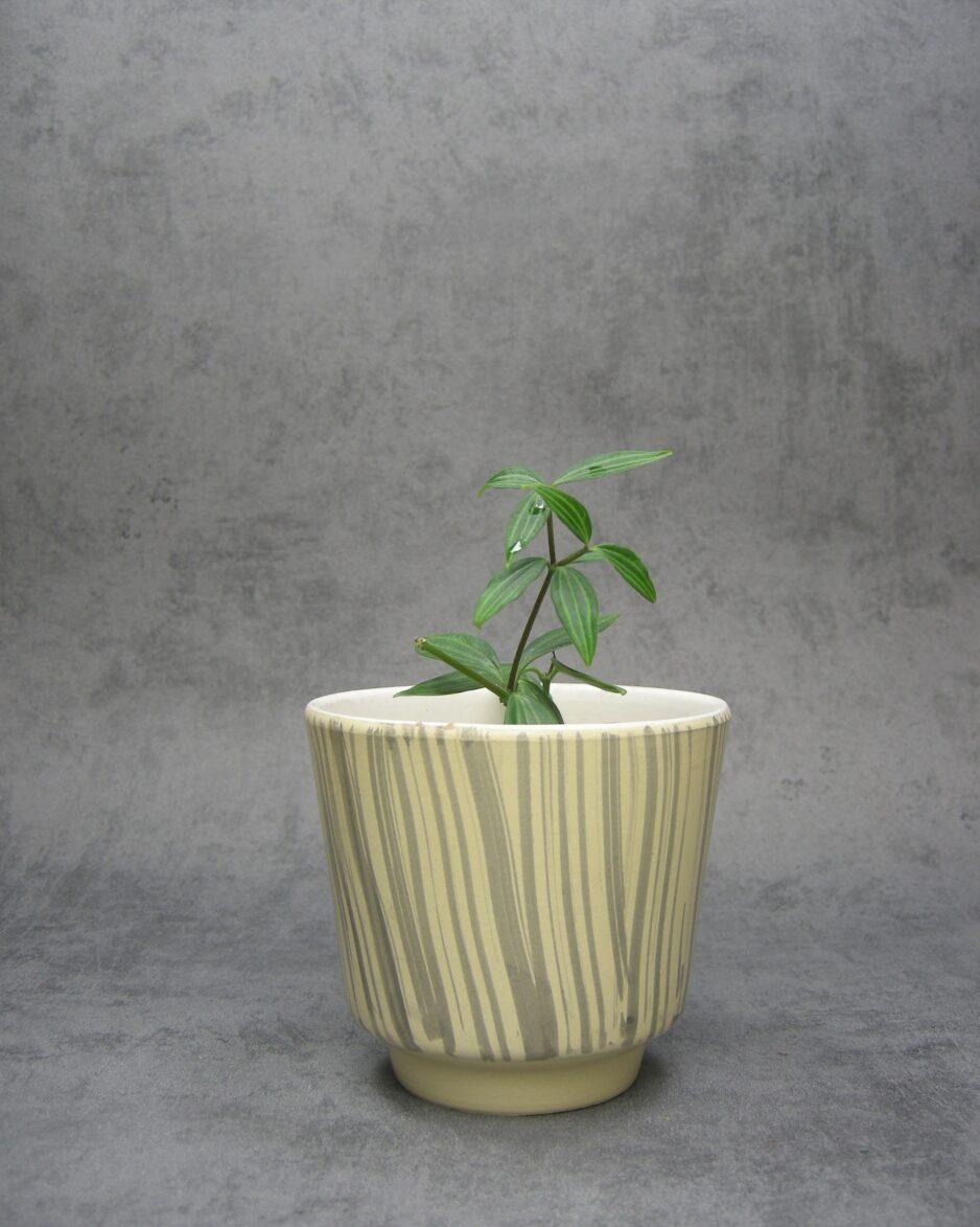 1051 - bloempot zebraprint geel grijs