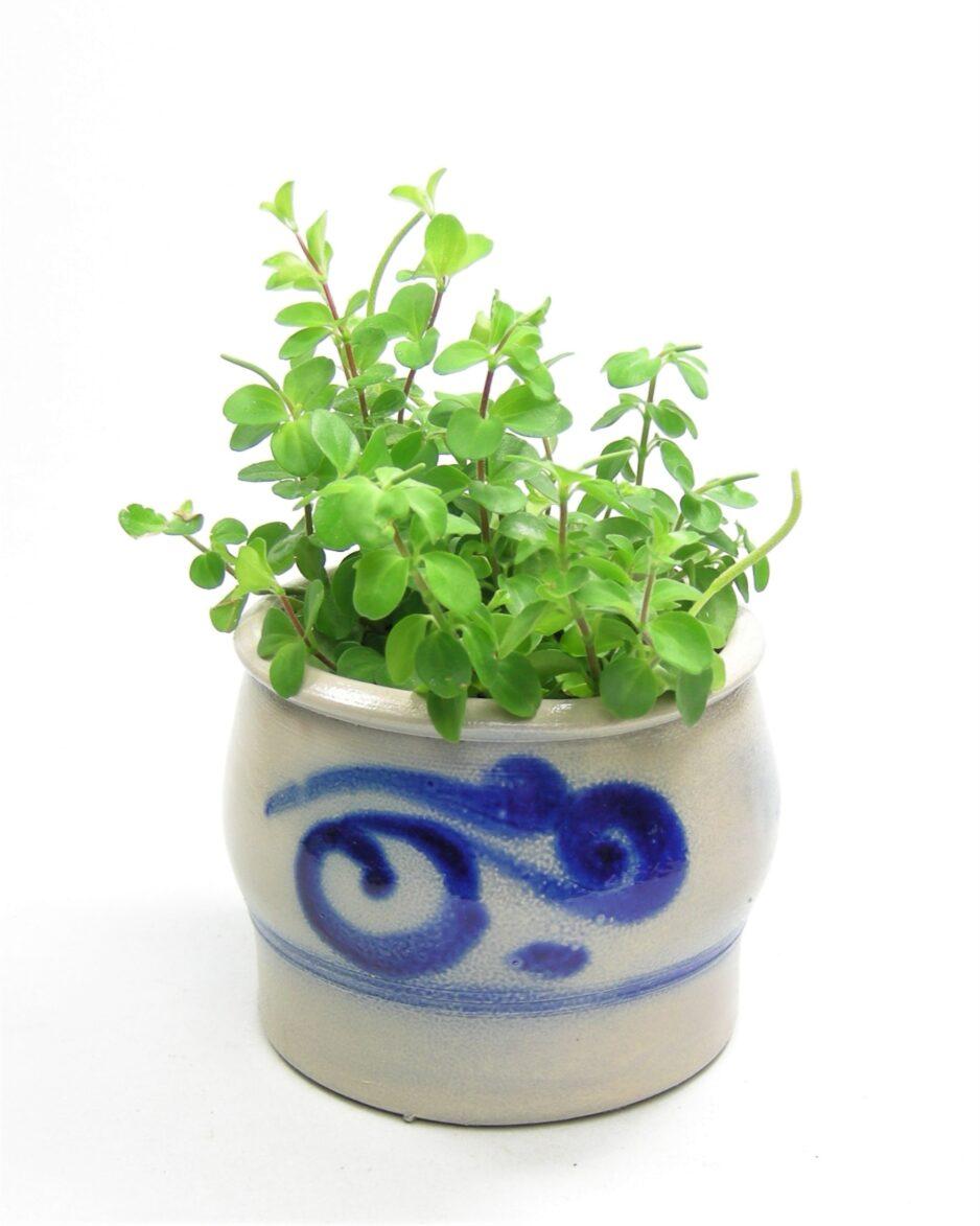 1133 - bloempot Keuls aardewerk grijs-blauw