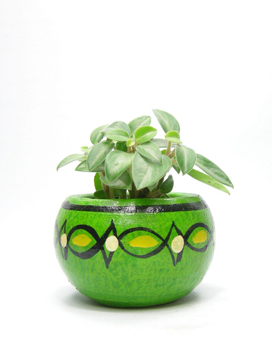 710 - bloempot Mexico groen