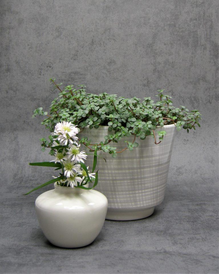74 – Vintage bloempot wit-grijs geruit jaren 50 (1)