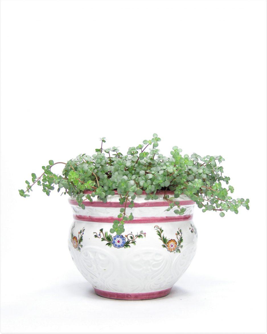 836 - bloempot Haly 01135-15 wit - roze