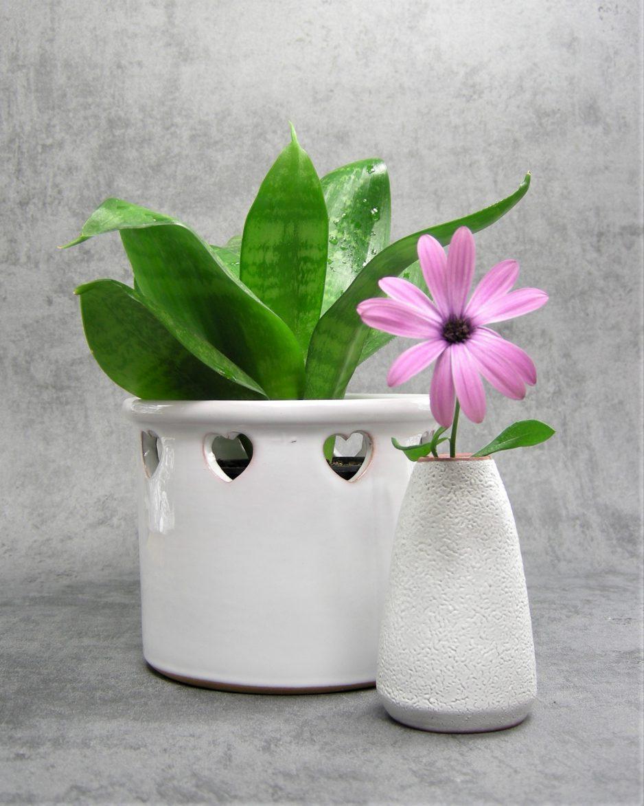 882 - bloempot met hartjes wit