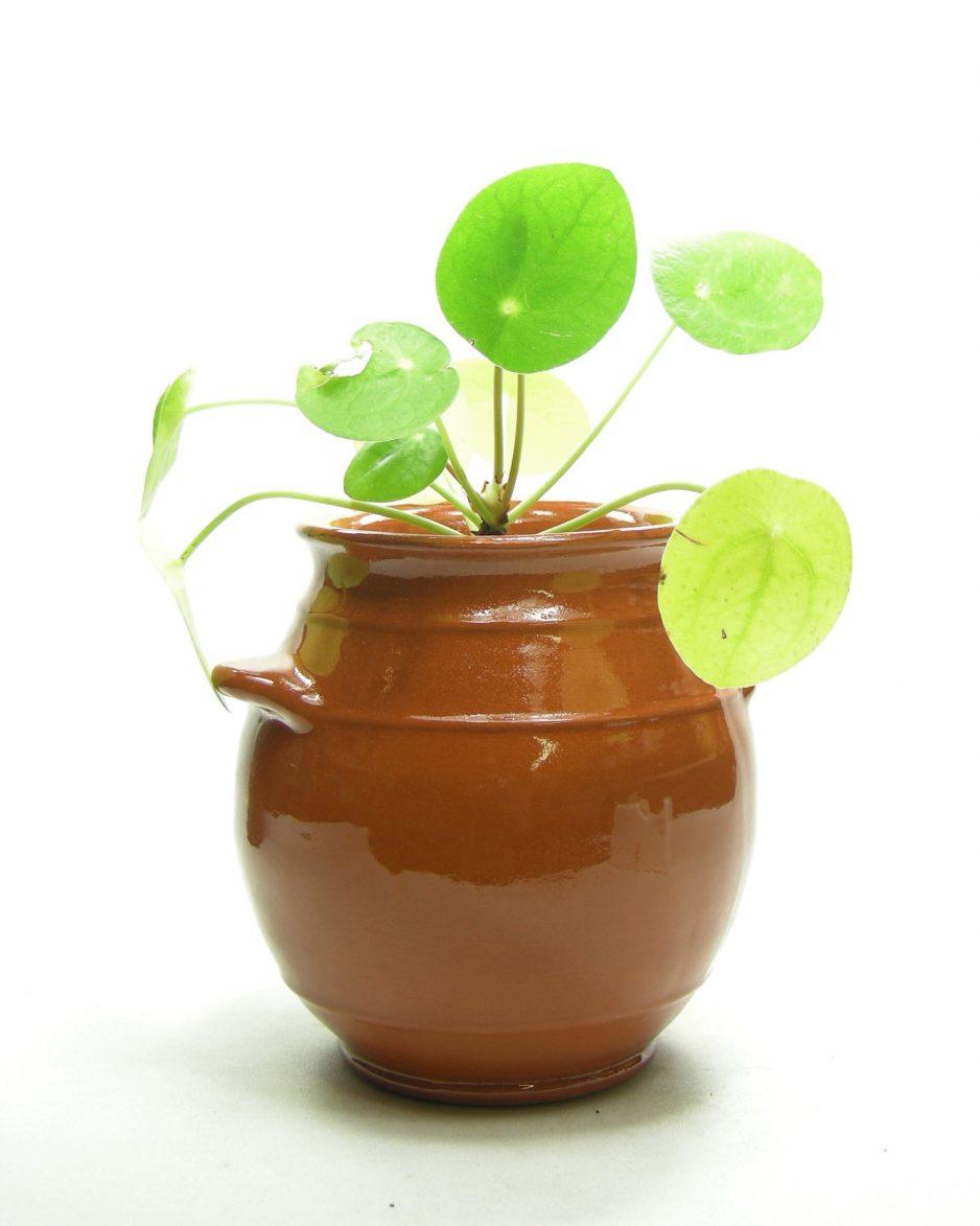 1259 - bloempot kruikmodel bruin