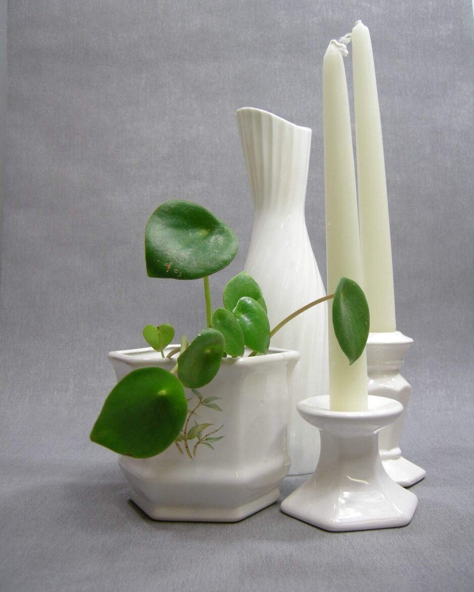 1446 bloempot bamboe - kandelaars wit 1444-1445