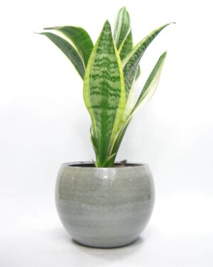 1414 - bloempot groen-grijs