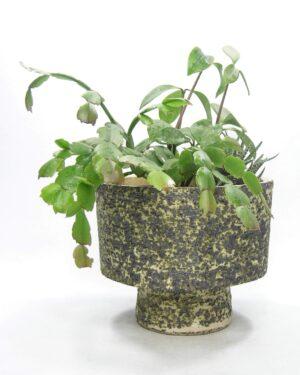 1590 - vintage bloempot Berkenbast zwart - groen